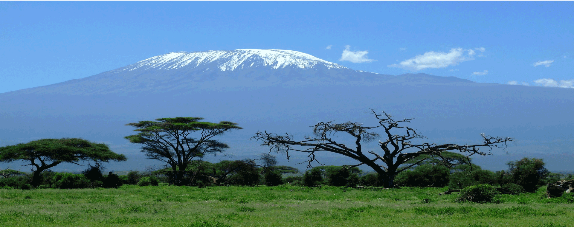 Kilimanjaro Via Machame  Route (7 Days and 6 Nights)